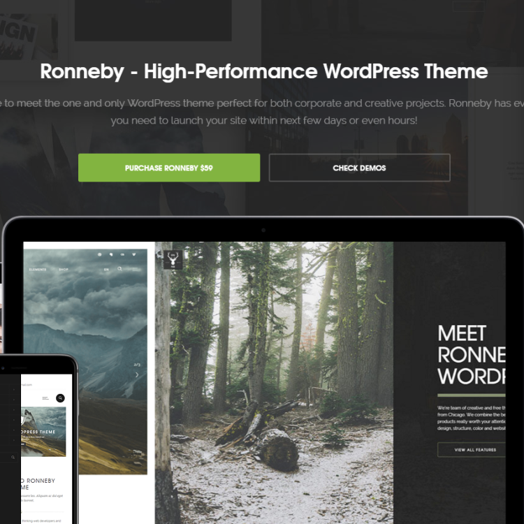 Ronneby Theme for Wordpress and PageLines